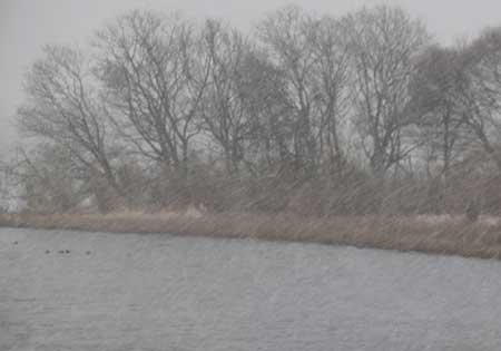 雪降る琵琶湖